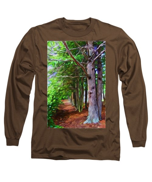 Lincoln's Path Long Sleeve T-Shirt by Joan Reese