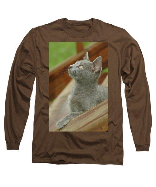 Little Gray Kitty Cat Long Sleeve T-Shirt