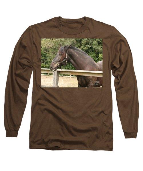 Majestic Horse  Long Sleeve T-Shirt