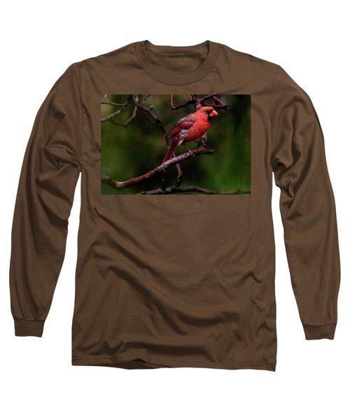 Male Northern Cardinal Long Sleeve T-Shirt
