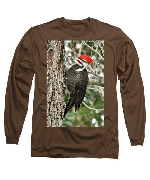 Male Pileated Woodpecker 6069. Long Sleeve T-Shirt