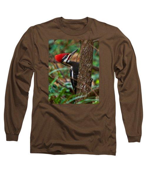 Male Pileated Woodpecker Long Sleeve T-Shirt by Robert L Jackson