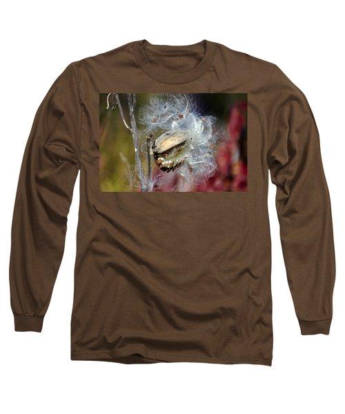 Milkweed Silk Long Sleeve T-Shirt