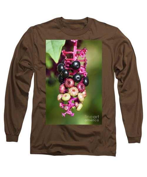Mixed Berries On Branch Long Sleeve T-Shirt