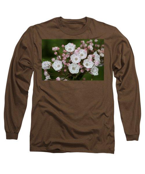 Mountain Laurel I Long Sleeve T-Shirt by Henri Irizarri