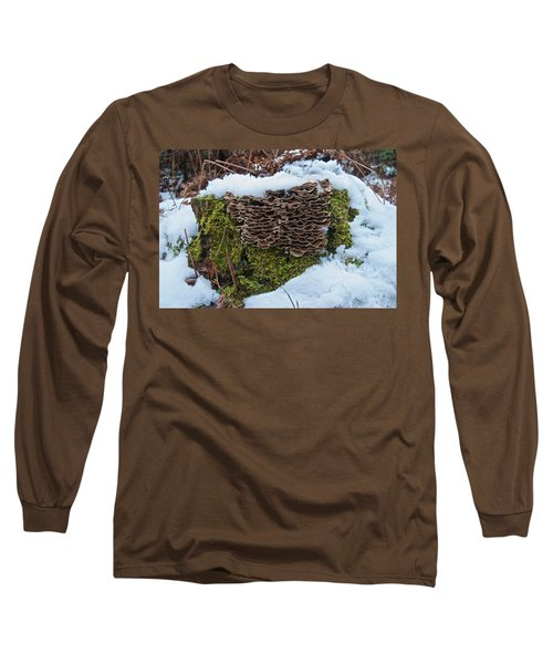 Mushrooms And Moss Long Sleeve T-Shirt by Michael Peychich