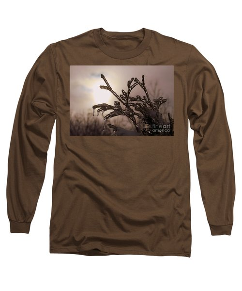 Natures  Ice Sculpture Long Sleeve T-Shirt