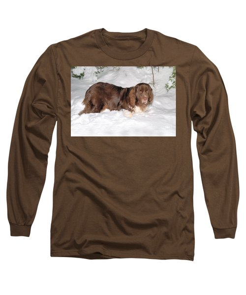 Long Sleeve T-Shirt featuring the photograph Newf In Snow by Debbie Stahre