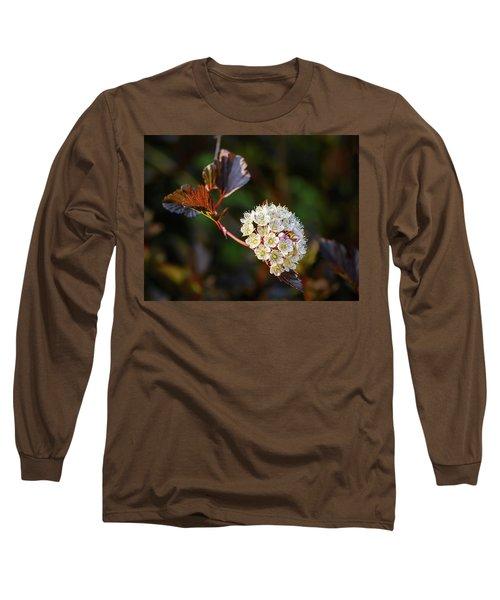Ninebark Summer Wine Long Sleeve T-Shirt