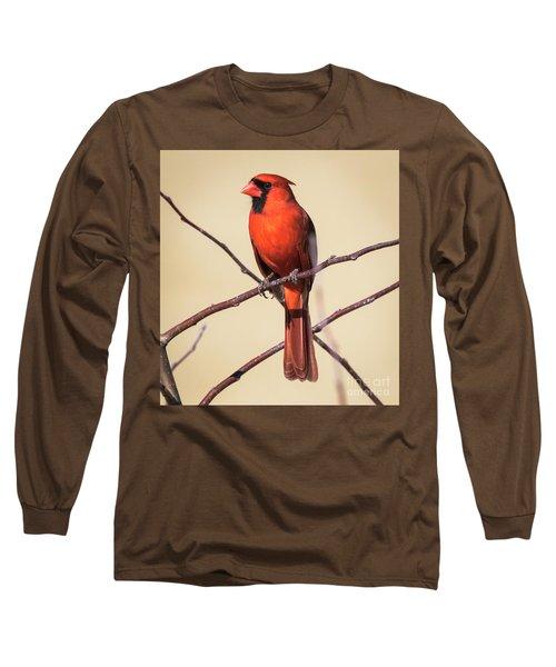 Northern Cardinal Profile Long Sleeve T-Shirt by Ricky L Jones