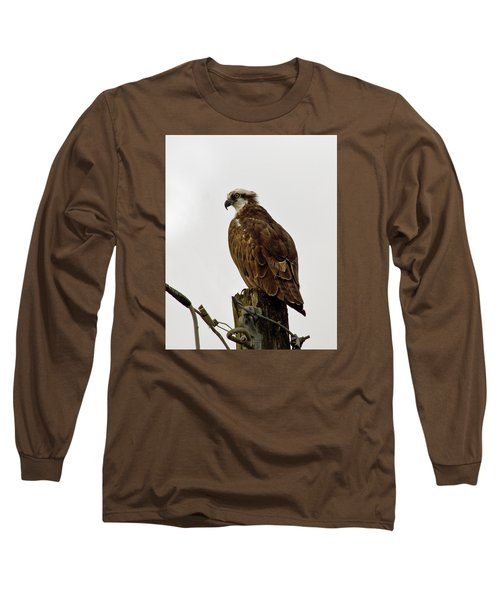 Ollie, The Osprey Long Sleeve T-Shirt