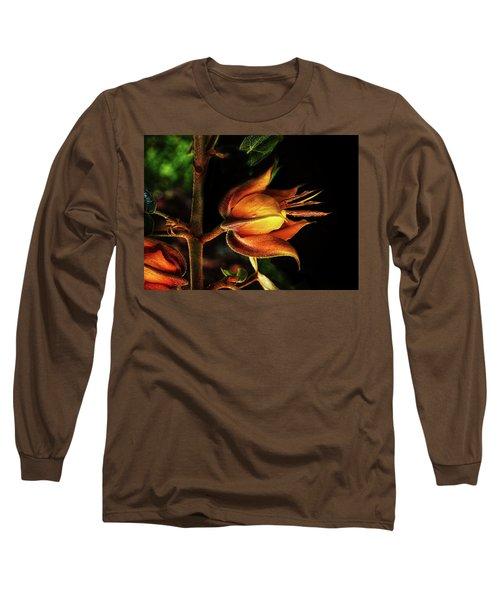 Orange Burst Long Sleeve T-Shirt