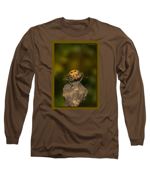 Long Sleeve T-Shirt featuring the photograph Orange Stink Bug 002 by Kevin Chippindall