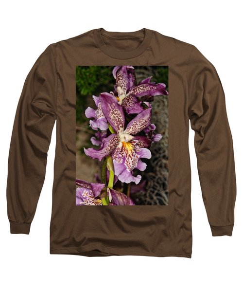 Orchid 347 Long Sleeve T-Shirt