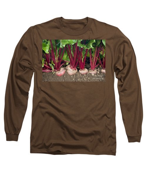 Organic Beets Long Sleeve T-Shirt
