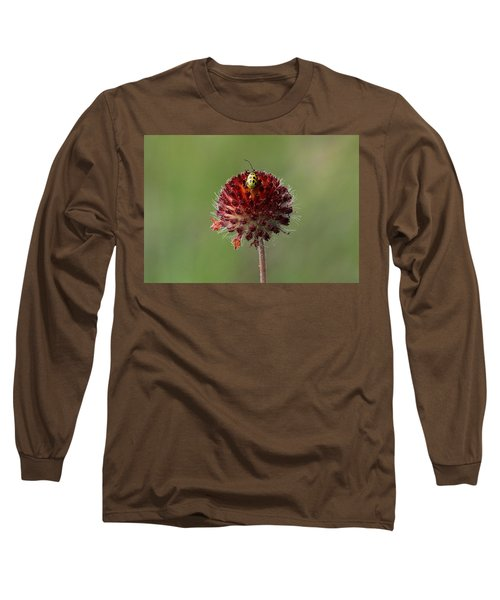 Over The Top Long Sleeve T-Shirt