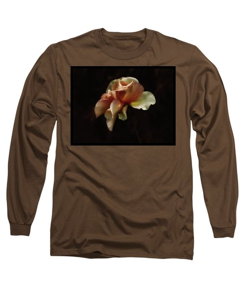 Painted Roses Long Sleeve T-Shirt by Elaine Malott