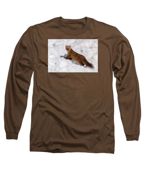 Pine Marten In Snow Long Sleeve T-Shirt