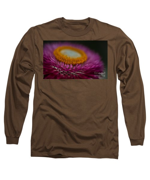 Pink And Yellow Strawflower Close-up Long Sleeve T-Shirt