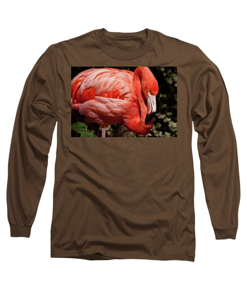 Pink Flamingo Long Sleeve T-Shirt