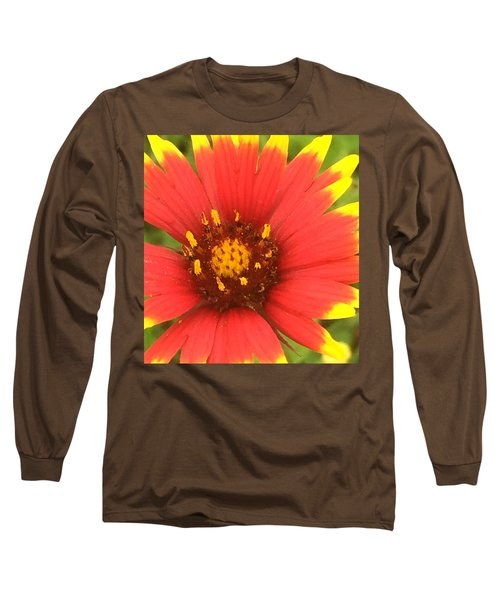 Pollinated Long Sleeve T-Shirt