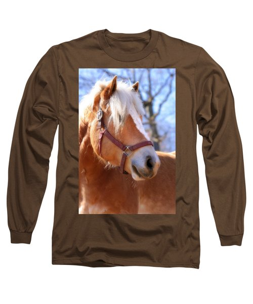 Portrait Of A Haflinger - Niko Long Sleeve T-Shirt by Angela Rath