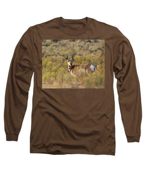 Pronghorn Doe Long Sleeve T-Shirt
