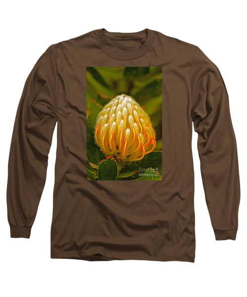 Proteas Ready To Blossom  Long Sleeve T-Shirt by Michael Cinnamond