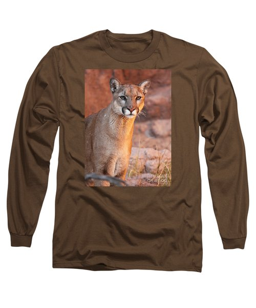 Long Sleeve T-Shirt featuring the photograph Puma At Sunset by Max Allen