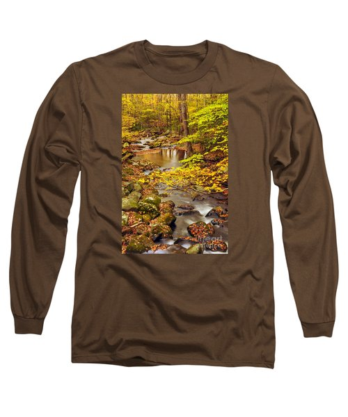 Long Sleeve T-Shirt featuring the photograph Pure Gold by Debbie Green
