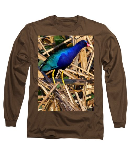 Long Sleeve T-Shirt featuring the photograph Purple Galinule 002 by Chris Mercer