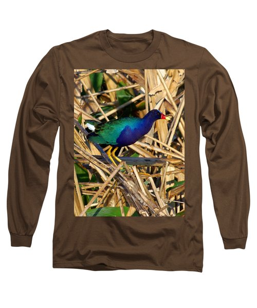 Long Sleeve T-Shirt featuring the photograph Purple Galinule 003 by Chris Mercer
