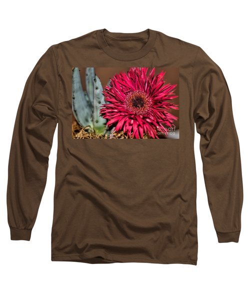Long Sleeve T-Shirt featuring the photograph Red Daisy And The Cactus by Diana Mary Sharpton