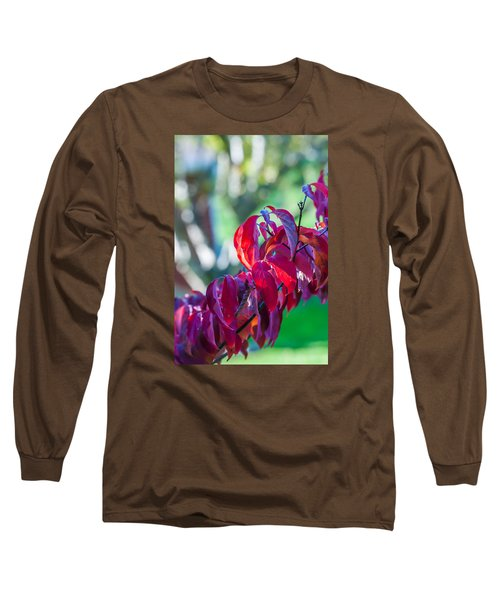 Red Leaves - 9592 Long Sleeve T-Shirt by G L Sarti