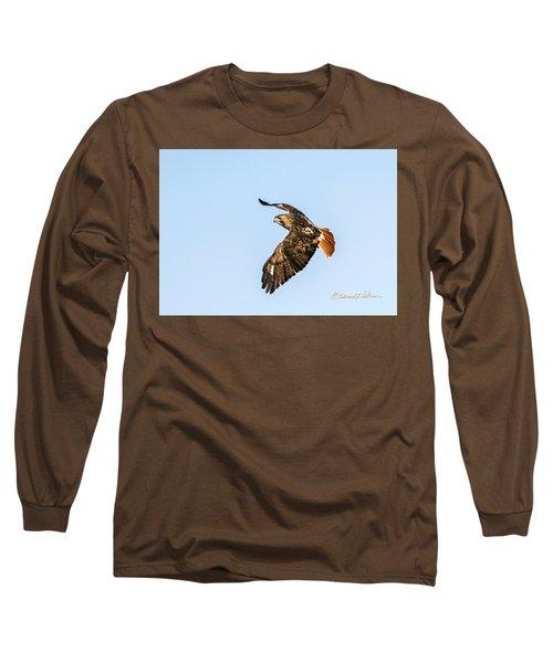 Red-tail Hawk In Flight Long Sleeve T-Shirt