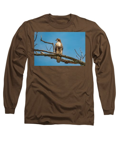 Red Tail Hawk Perched Long Sleeve T-Shirt