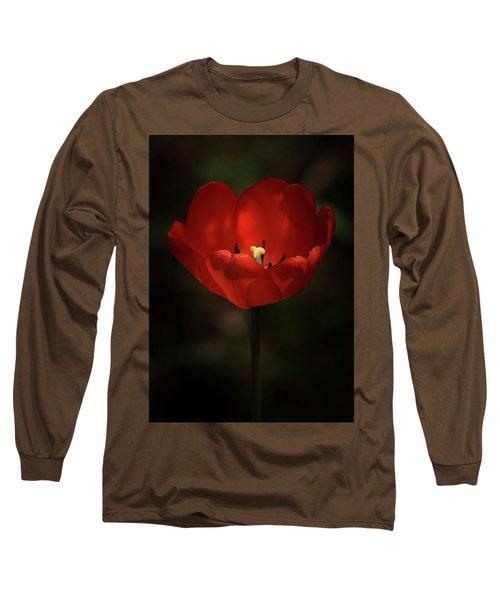 Red Tulip Long Sleeve T-Shirt by Ernie Echols
