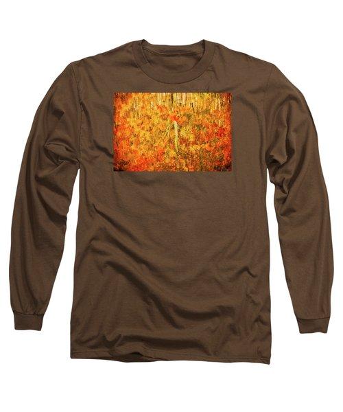 Reflections Of Fall Long Sleeve T-Shirt by Rick Furmanek