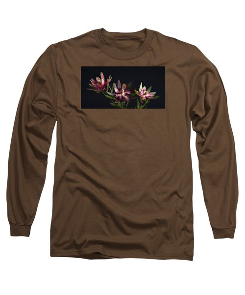Red Safari Sunset Proteaflora  Long Sleeve T-Shirt by Catherine Lau