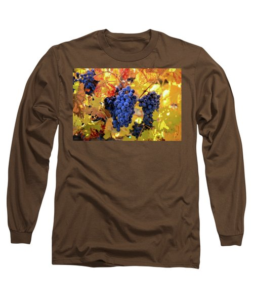 Rich Fall Colors With Grapes Long Sleeve T-Shirt