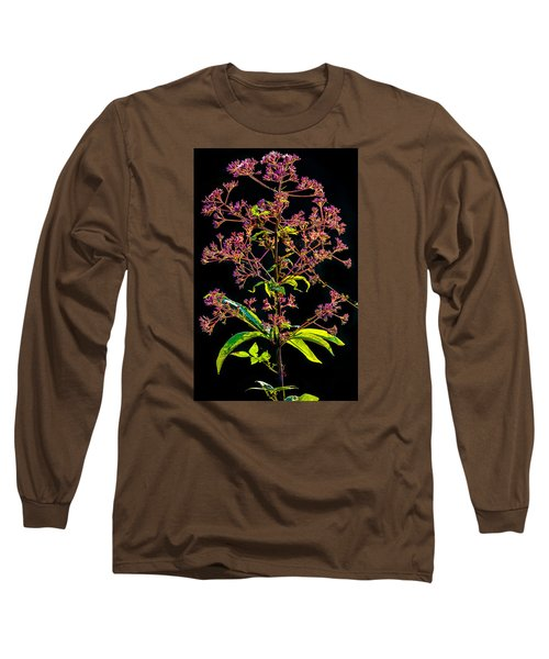 Long Sleeve T-Shirt featuring the photograph Rustic Weed by Brian Stevens