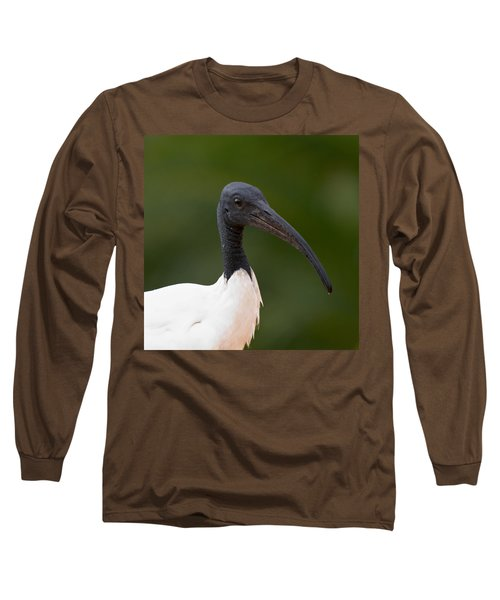 Sacred Ibis Long Sleeve T-Shirt