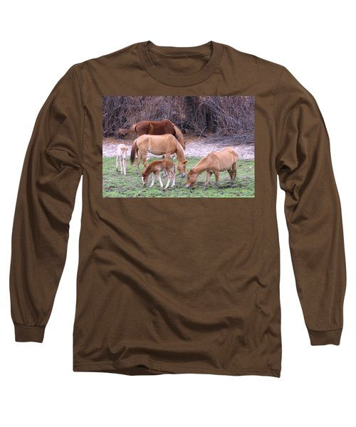 Salt River Wild Horses In Winter Long Sleeve T-Shirt