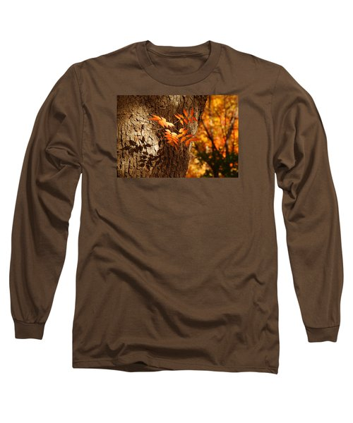 Fall Color Long Sleeve T-Shirt by Tam Ryan