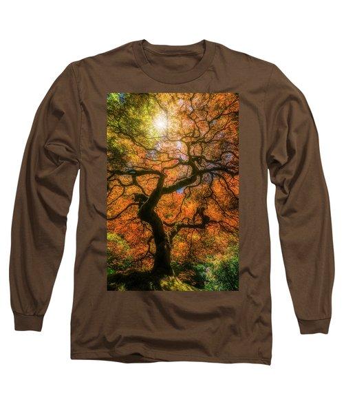 Shine Through Long Sleeve T-Shirt