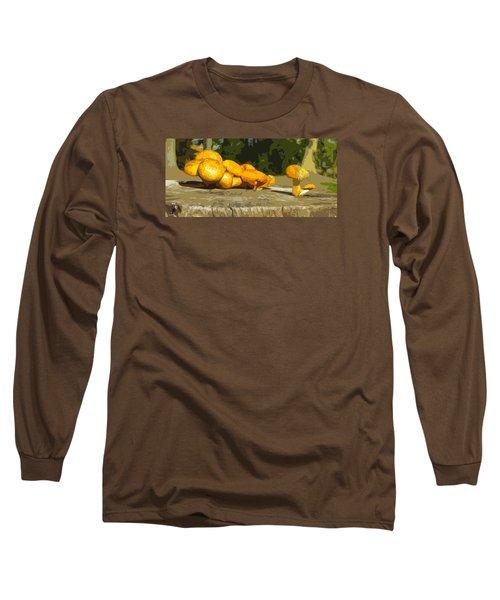 Shrooms On A Stump Long Sleeve T-Shirt
