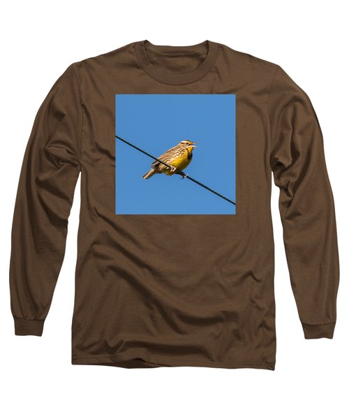 Singing On The Wire Long Sleeve T-Shirt
