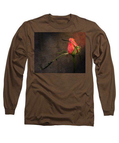 Single Rose Long Sleeve T-Shirt by Ann Lauwers