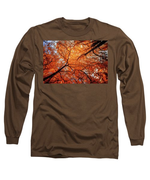 Sky Roots In Forest Red Long Sleeve T-Shirt by John Williams
