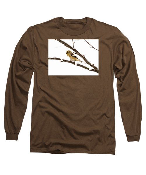 Snowy Day Goldfinch Long Sleeve T-Shirt by Betty Pauwels